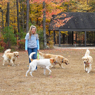Crsiten and Dogs