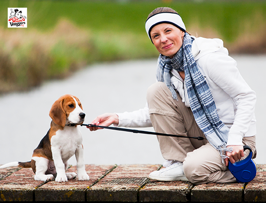 regular walks improve your health and your dog's too